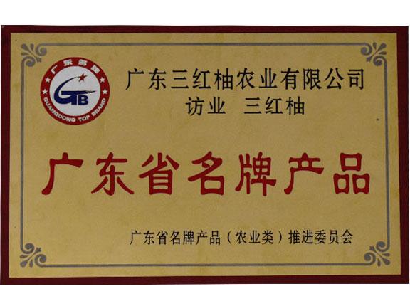 广东省名牌产品(农业类)推进委员会